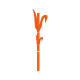 Icono Caña de Azucar
